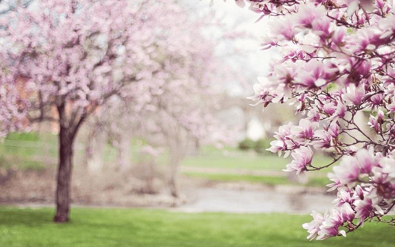 春の男性用アウター